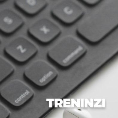 04 TRENINZI